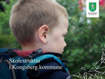 Skolestruktur i Kongsberg kommune