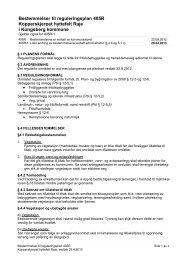 Reviderte planbestemmelser - Kongsberg Kommune