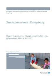 Fremtidens skole på Kongsberg - Skoleanlegg