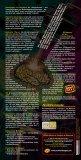 Halluzinogene - Institut Suchtprävention - Seite 2