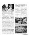 AFRIKAMISSIONARE - Kontinente - Seite 5