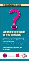 Grenzenlos motiviert – endlos befristet? - Kooperationsstelle ...