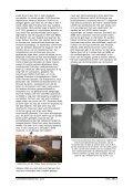 Koerier nr. 121 - Kovom - Page 7