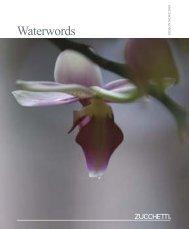 Waterwords - Montanari Group