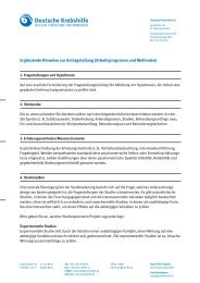 Ergänzende Hinweise zur Antragstellung (Arbeitsprogramm und ...