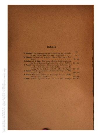 e-book - kreidefossilien.de