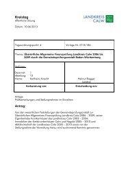 Überörtliche Allgemeine Finanzprüfung Landkreis Calw 2006 bis 2009