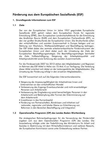 Detaillierte Informationen zum ESF im Landkreis Calw