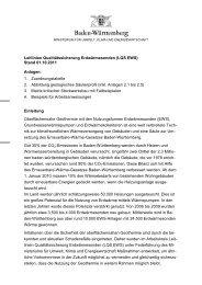 Leitlinien Qualitätssicherung Erwärmesonden