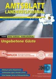 21/2013 - Landkreis Neustadt ad Aisch - Bad Windsheim