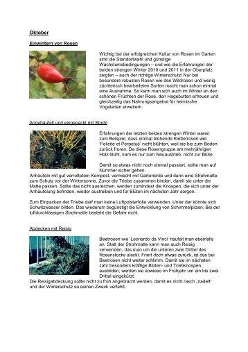 Oktober 2012 Winterschutz für Rosen - Landkreis Tirschenreuth