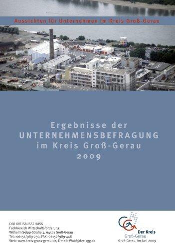 Unternehmensbefragung 2009 - Kreis Groß-Gerau