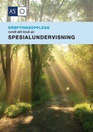 SPESIALUNDERVISNING - KS