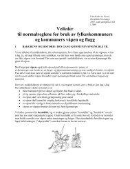 Veileder til bruk av kommunevåpen og flagg (pdf) - Selbu kommune