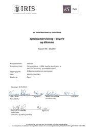 Iris Rapport 2012-017 Spesialundervisning - drivere og dilemma