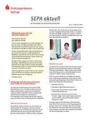 Newsletter Nr. 4 - Februar 2013