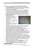 Dialogisches Erstlesen und Erstschreiben nach dem ... - Page 6