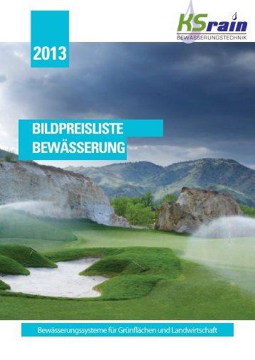 KSrain Katalog 2013 für unsere gewerbliche Fachkundschaft