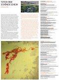Infoblatt/Termine - Kubiss.de - Seite 2