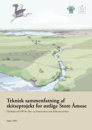 Teknisk sammenfatning af skitseprojekt for østlige Store Åmose