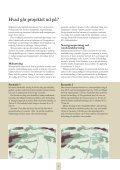 Teknisk sammenfatning af skitseprojekt for østlige Store Åmose - Page 4