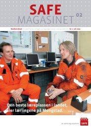 nr. 2-2009 - Safe
