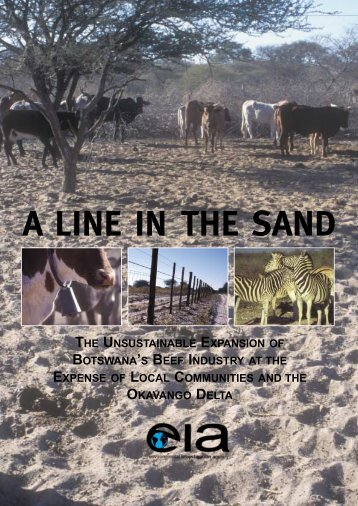 A LINE IN THE SAND - Environmental Investigation Agency