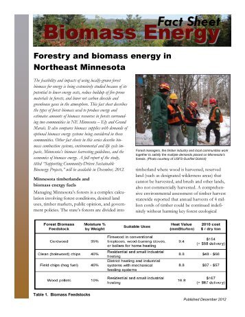 Forestry and biomass energy - Heating the Midwest