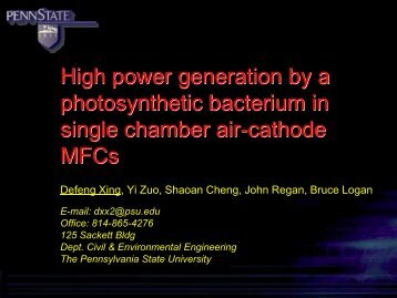 High power generation by a photosynthetic bacterium in single ...