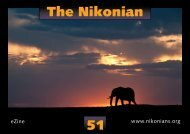 The Nikonian 51