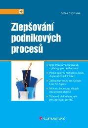 Zlepšování podnikových procesů - náhled - eReading