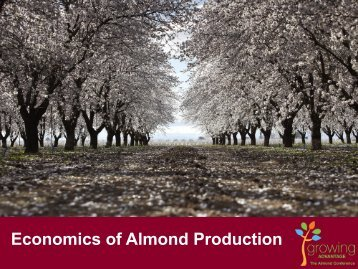 Economics of Almond Production - Almond Board of California
