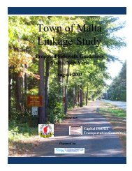 Proposed Sidewalk Guidelines (2.5 MB PDF) - Capital District ...