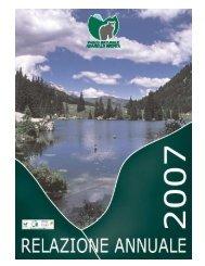 relazione annuale 2007 con aggiornamento alla dichiarazione ...