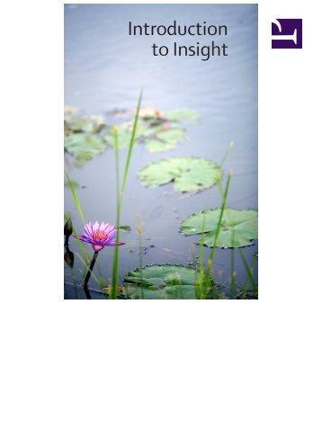 Introduction to Insight Meditation - HolyBooks.com