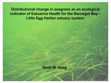 Distributional Change in Seagrass as an Ecological ndicator of ...