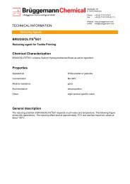 BRUGGOLITE®E01 Chemical Characterization Properties General ...