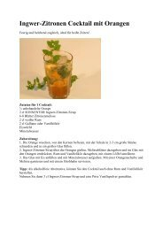 Ingwer-Zitronen Cocktail - meliada