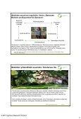 Schäfer 8.4.2013 - Maaseutupolitiikka - Page 4