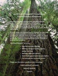 Environmental Statement - American Polywater