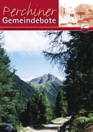 Gemeindebote Nr. 04/2008 (2,97 MB)