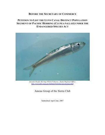 Petition to List Lynn Canal Pacific Herring under the Endangered ...