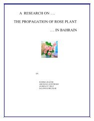 A RESEARCH ON …. THE PROPAGATION OF ROSE PLANT …. IN ...