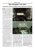 A martonvásári kukoricanemesítés genetikai hátterének változása - Page 3