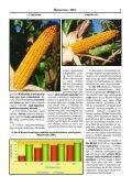 A martonvásári kukoricanemesítés genetikai hátterének változása - Page 7