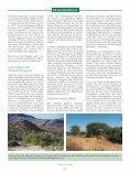 Meine Reise zu den Rüppells Papageien - Page 2