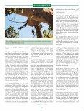 Meine Reise zu den Rüppells Papageien - Seite 3