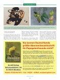 Meine Reise zu den Rüppells Papageien - Page 5