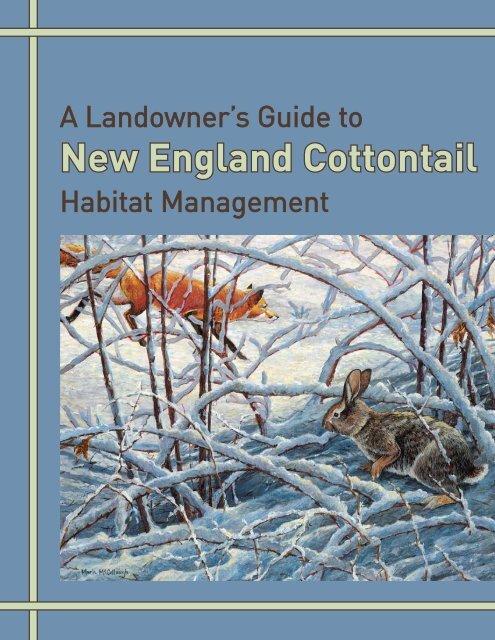 A Landowner's Guide to New England Cottontail Habitat Management