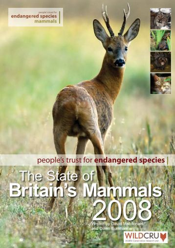 State of Britain's Mammals 2008 - People's Trust for Endangered ...